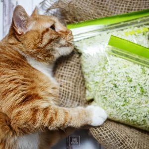 Ryż z kalafiora – szybko, tanio i fit!